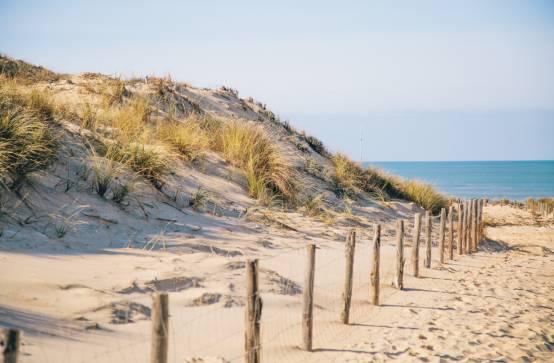 Farniente sur les plage de la presqu 39 le l ge cap ferret - Cap ferret office de tourisme ...