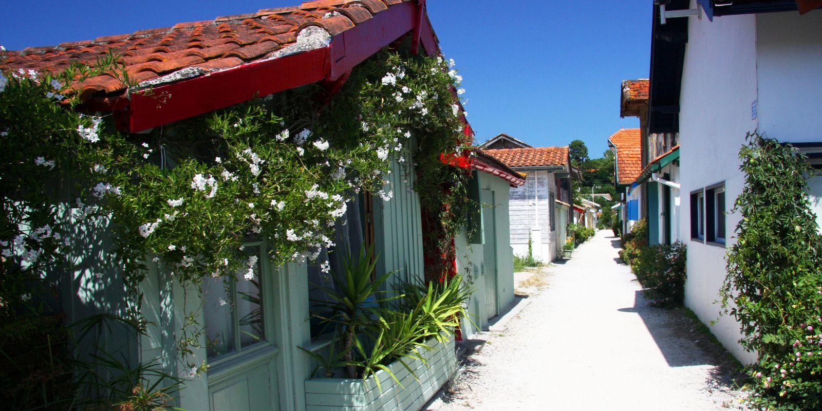 L 39 herbe le four plage visite activit s et h bergements - Office du tourisme de lege cap ferret ...