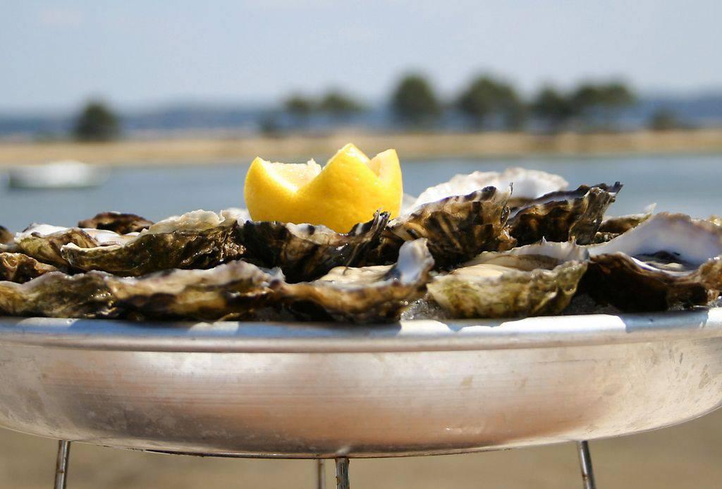 Croquer des huîtres les pieds dans l'eau