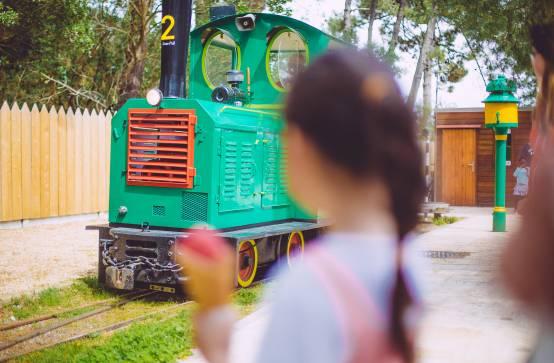 Petit Train du Cap Ferret