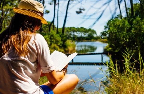 Réservoirs de Piraillan : Le chemin des mousses