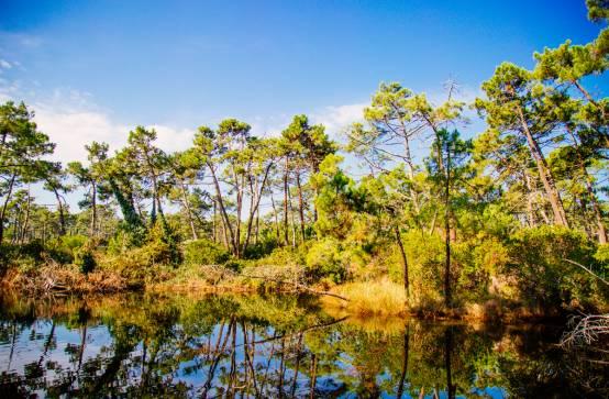 Réservoirs de Piraillan : Point de vue, image du monde